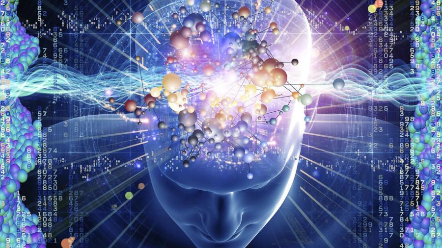 Активность мозга. Специализация нейрона и дифференциация опыта