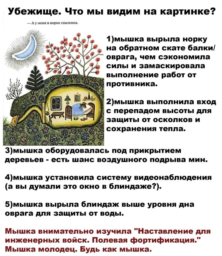 https://ic.pics.livejournal.com/colonelcassad/19281164/2587329/2587329_900.jpg
