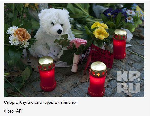 FireShot Screen Capture #852 - 'Белый медведь Кнут погиб из-за эпилептического припадка __ KP_RU' - www_kp_ru_daily_25658_821131