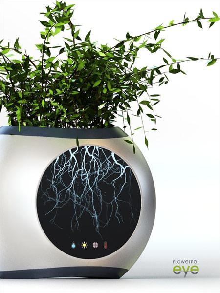 современный дом для растения