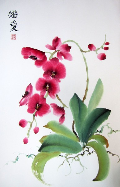 falenopsis_rose