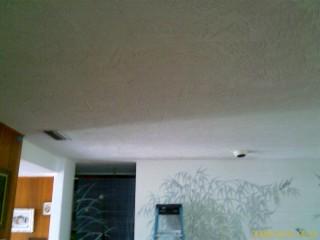 Holeless Ceiling