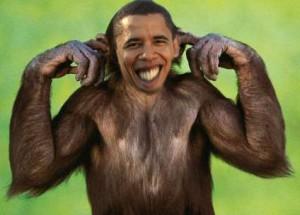 обама-обезьяна-02.jpg