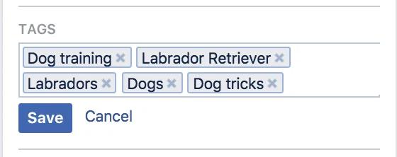 На рис. Метки: дрессировка собак, лабрадор ретривер, лабрадоры, собаки, трюки для собак