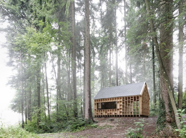 Haus-der-Waldeulen-in-Wolfurt-1