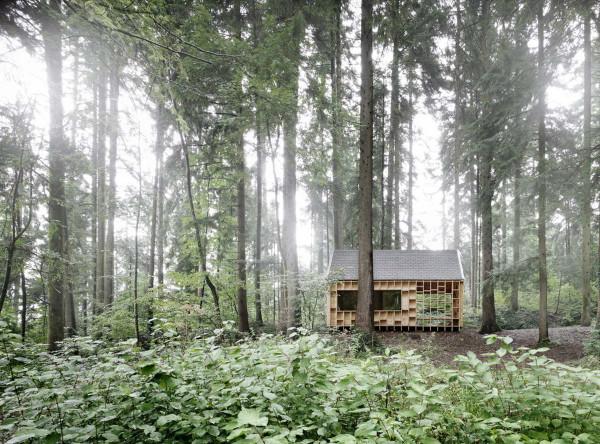Haus-der-Waldeulen-in-Wolfurt-3