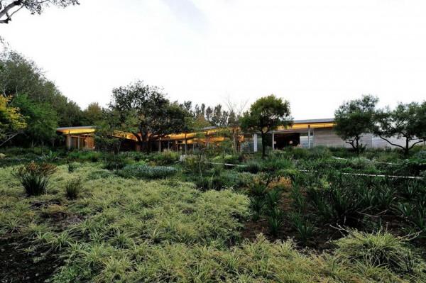 House-in-Constantia-Valley-4