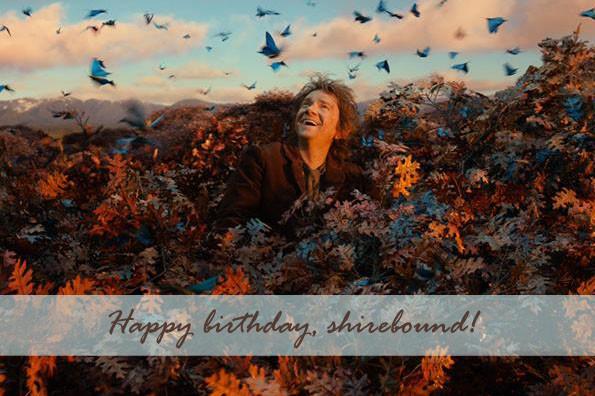 birthday shirebound 2014