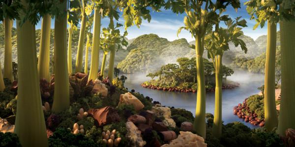 Brocolli-Forest.jpg