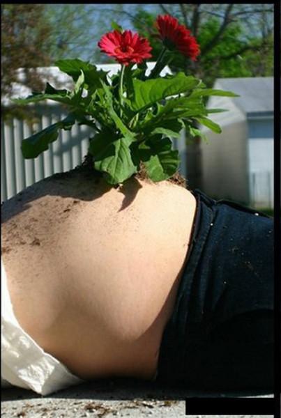 Bad-Pregnancy-Photos-Plant