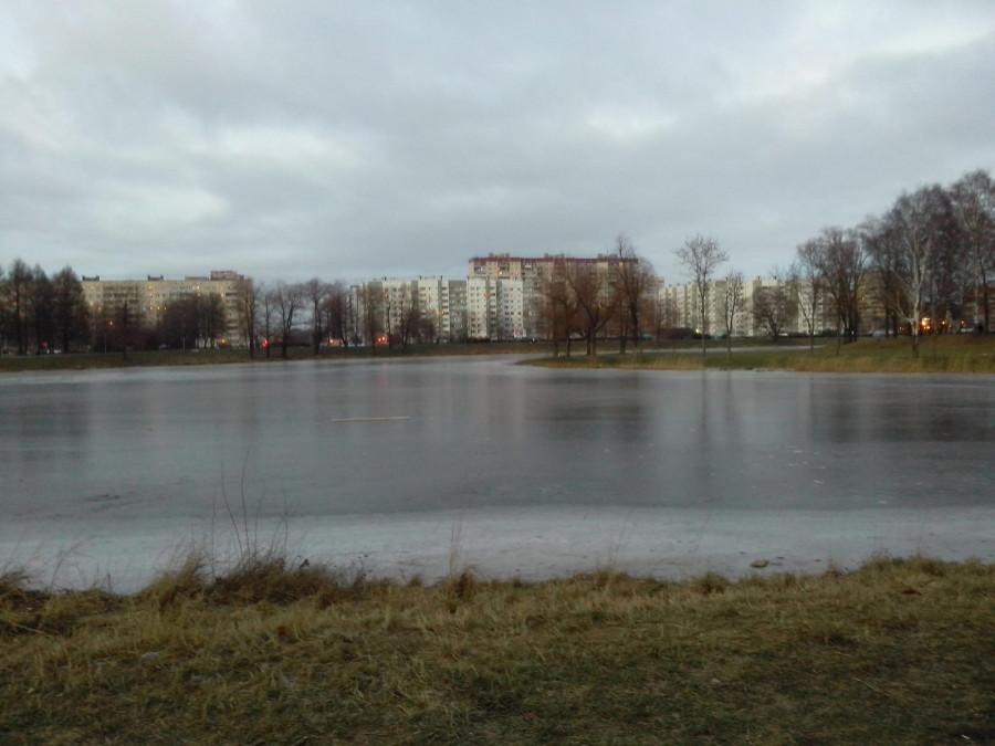 Лёд и травка