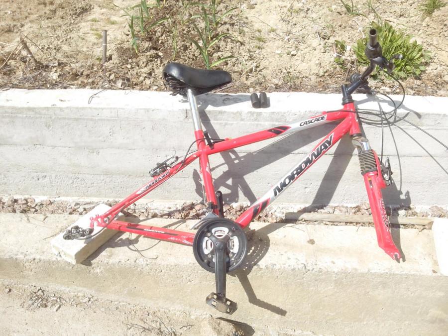 велоскелетик