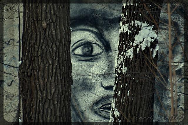 stranger in trees