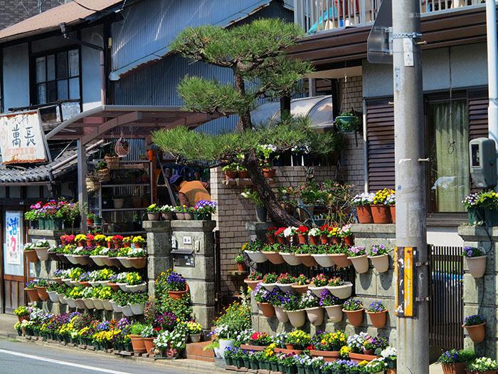 Kyoto1-44