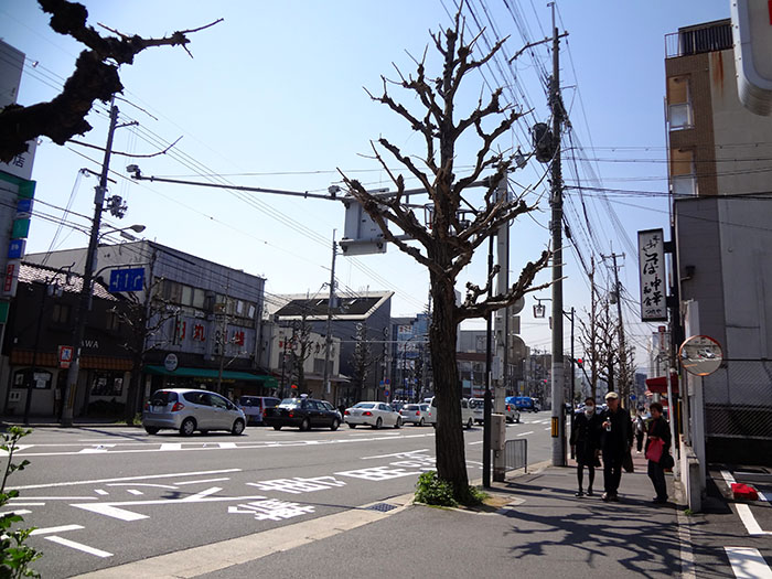 Kyoto1-53