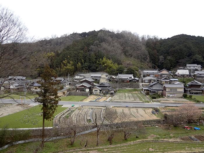 Yoshino-28