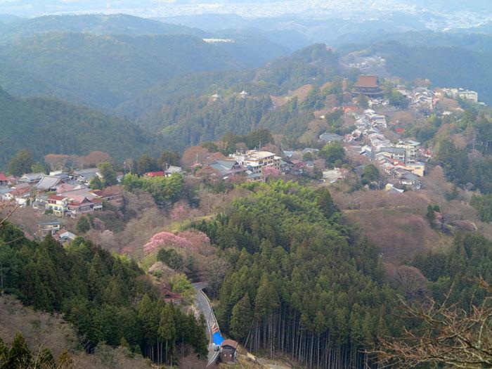 Yoshino-72