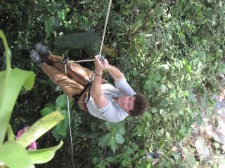 Climbing trees again