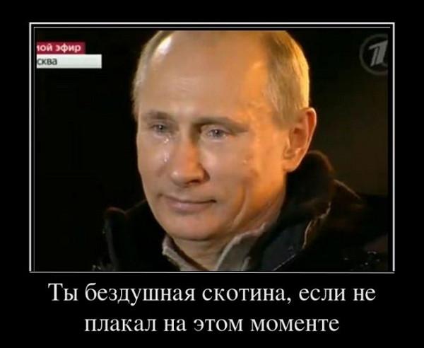 Переговоры Порошенко и Путина не запланированы, - Песков - Цензор.НЕТ 6508