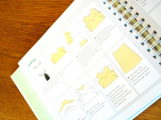 """A Project""""s Sewing Instructions"""