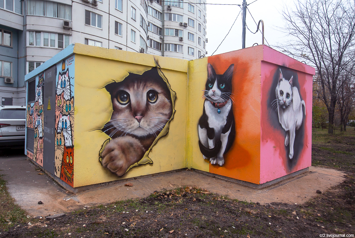 Москва. Котики на улице Анохина