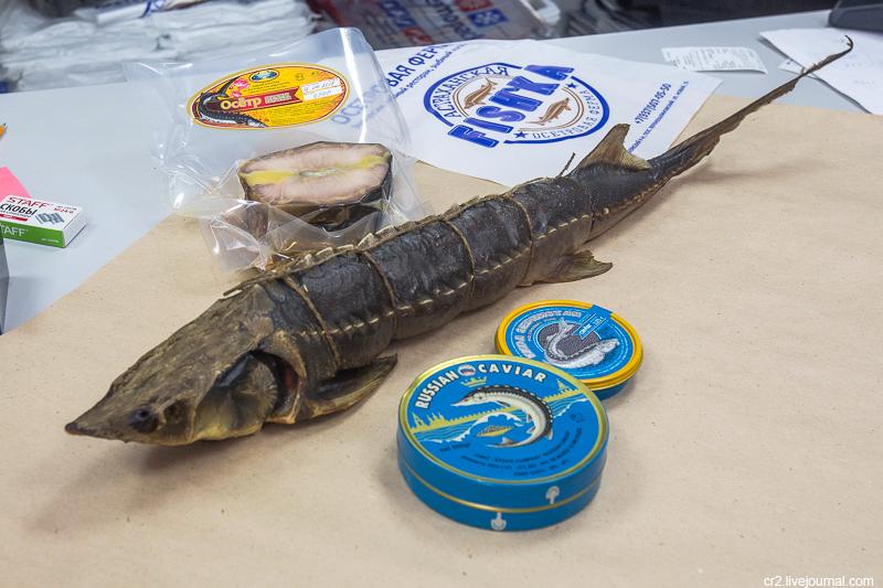 Астраханская FISH'ка