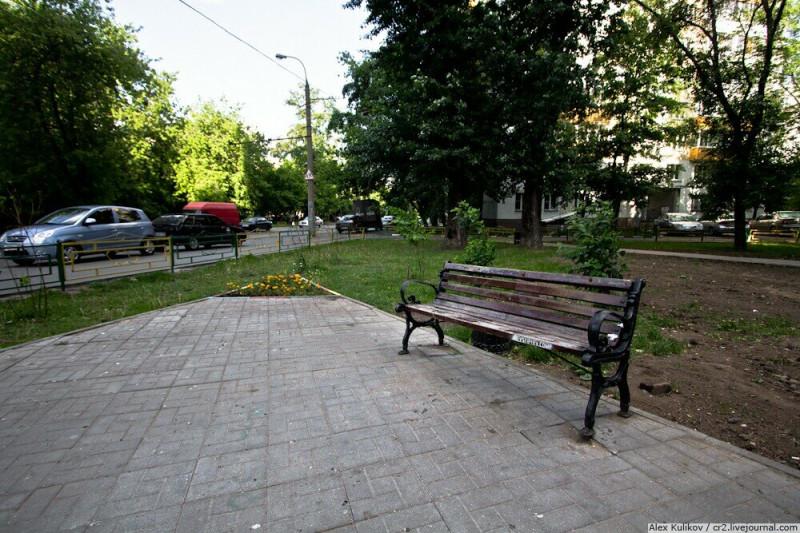 Лавочка, на которой сидел пропавший бобр в Сокольниках. Москва