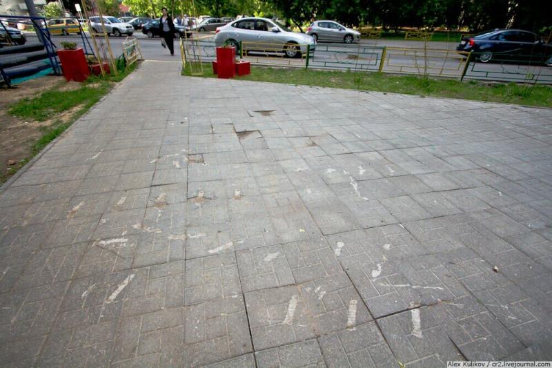 Вероятные следы, оставленные бобром во время того, как его тащили из дворика в Сокольниках. Москва