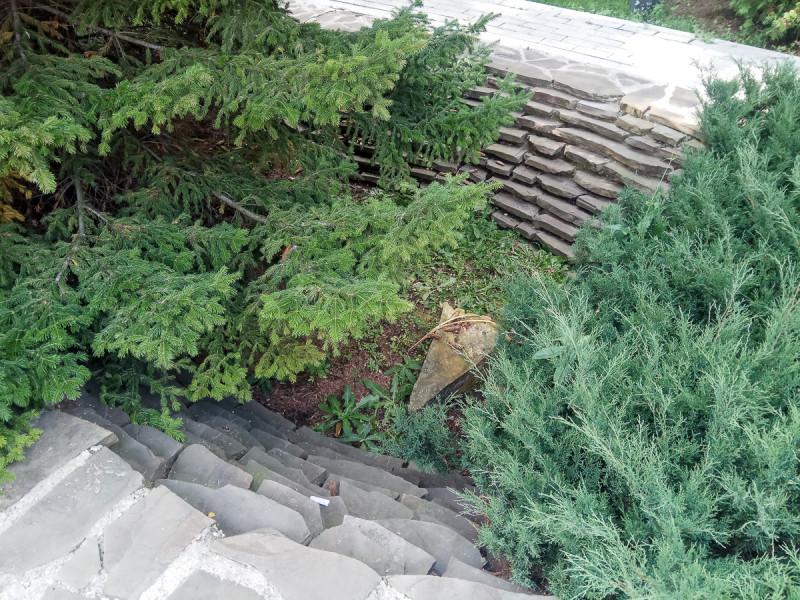 Сад при храме Николая Чудотворца в Голутвине - Китайском Патриаршем Подворье. Москва. Фото автора
