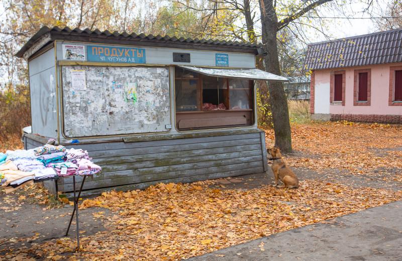 Рынок в посёлке Туголесский Бор. Московская область. Фото автора поста