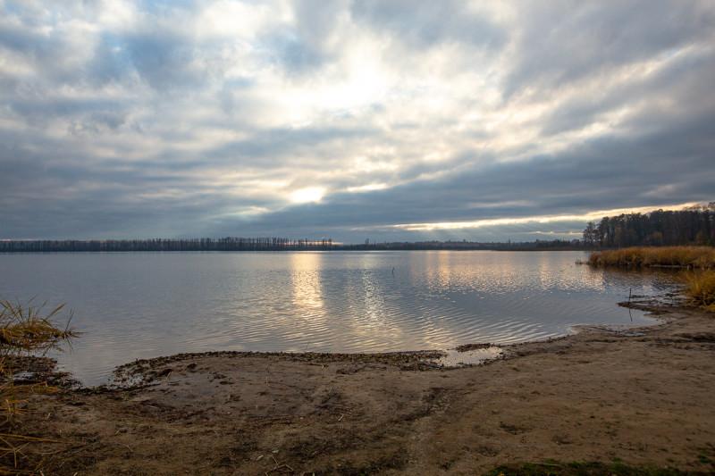 Озеро Свиношное. Московская область. Фото автора поста