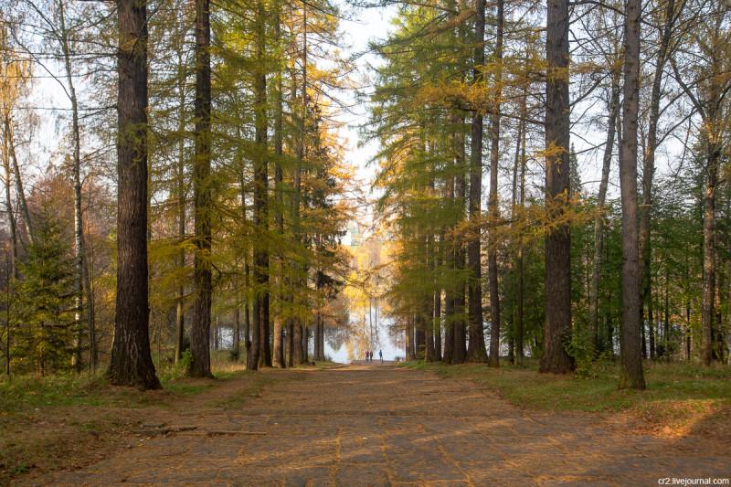 Парк усадьбы Середниково, вид от главного дома на пруд. Московская область