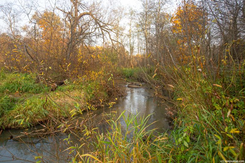 Речка Горетовка рядом с парком усадьбы Середниково. Московская область