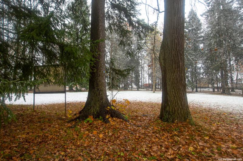 Усадьба Мураново, парк при первом снеге. Московская область