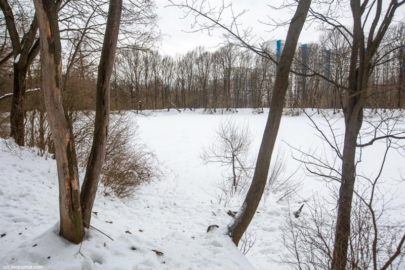 Пруд в усадьбе Ясенево. Москва