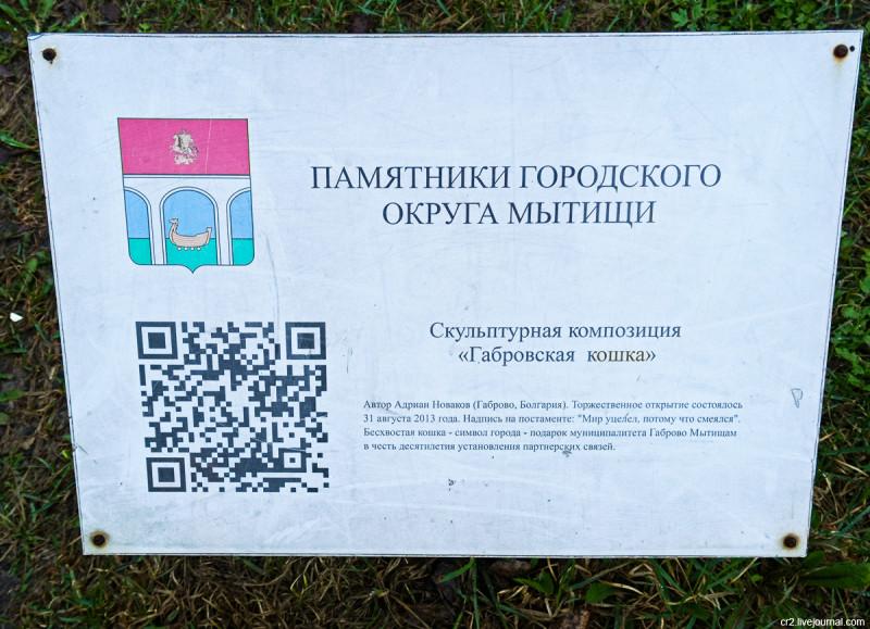 Габровская кошка, описание. Мытищи, Московская область