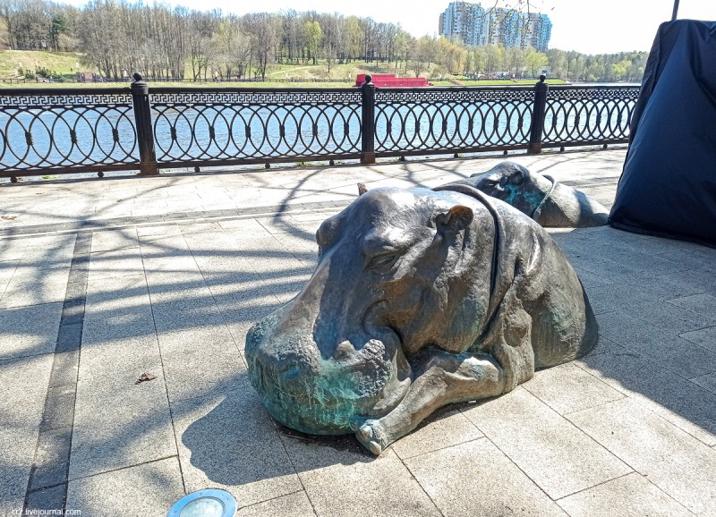 Бегемоты на набережной Канала имени Москвы. Химки, Московская область