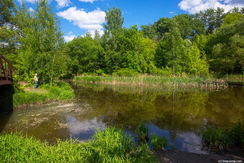 Устье речки Чермянки и река Яуза в парке Свиблово. Москва