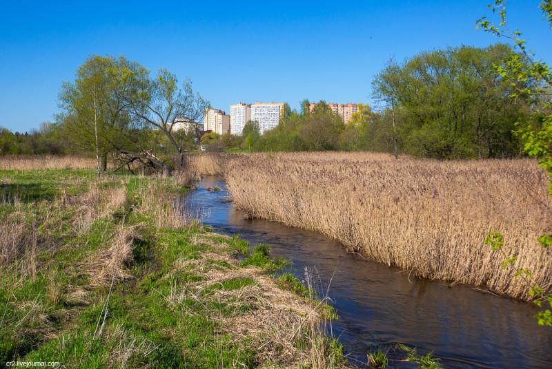 Река Яуза в бывшем селе Тайнинском (ныне часть города Мытищи). Московская область