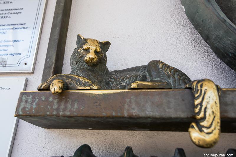 Самарский котик