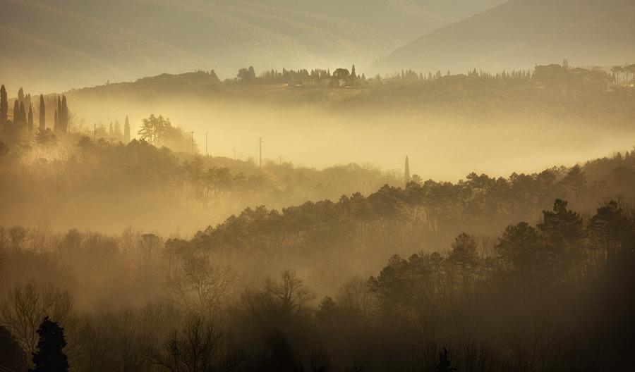 nebbia toscana