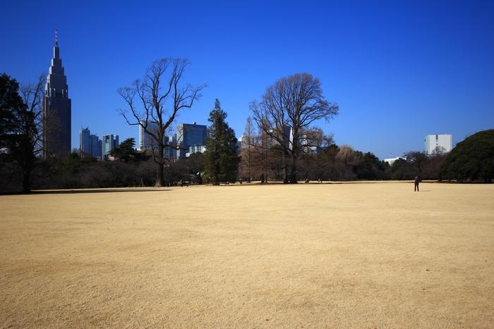 japon partie 4 (5)