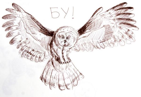 owl_boo