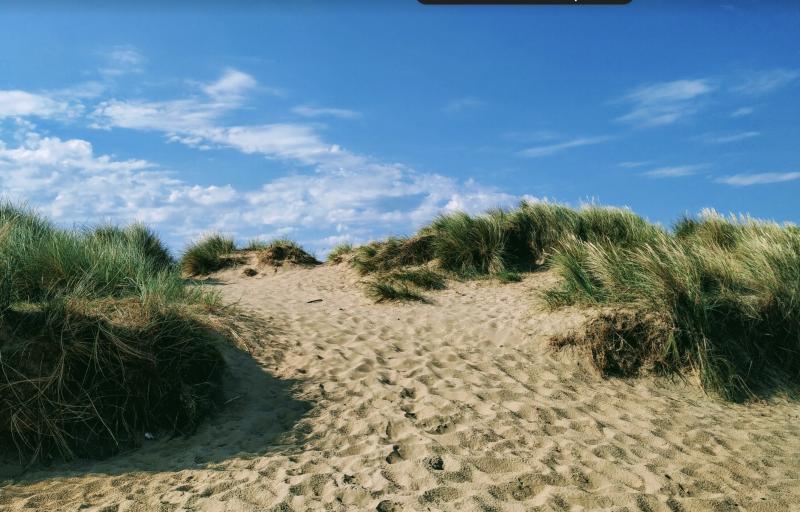 Внезапно выяснилось, что  в Норфолке есть неплохие пляжи