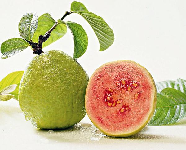 guava_pic.jpg