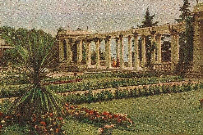Никитский сад имени В.Молотова в 1954 году