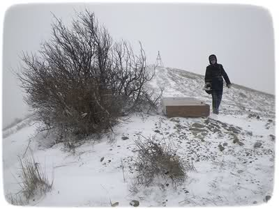 У могилы Волошина