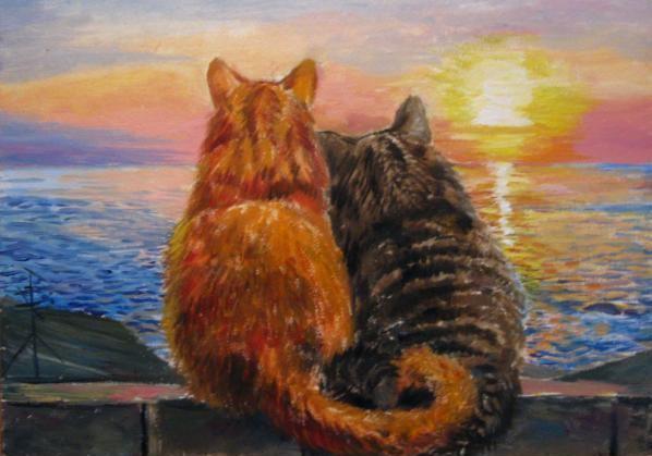 коты смотрят на закат