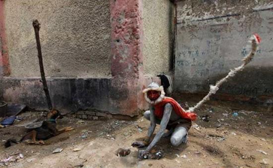 индия профессия отпугивание обезьян