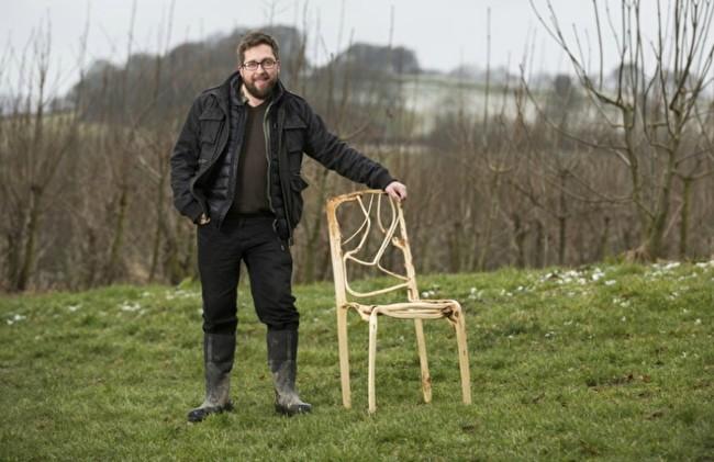 выращивание мебели